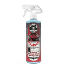 Activate Shine & Seal Spray Sealant